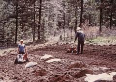 rototilling the soil
