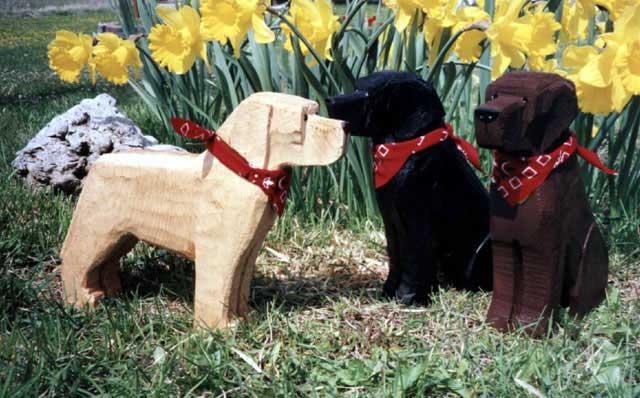Dog bark park cheerfulmonk