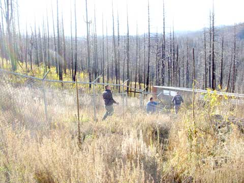 10-27-14-Removing-Fence