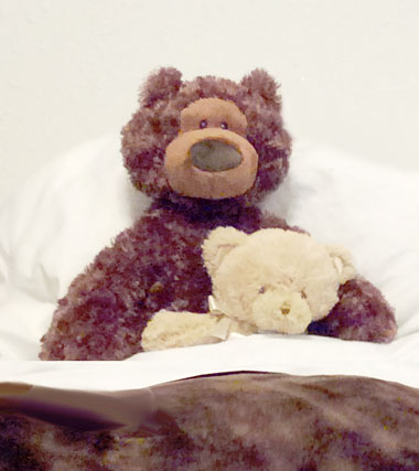teddy-380