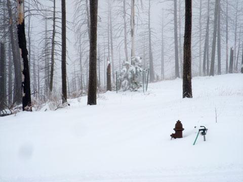 4-18-16-Snow-Land-3