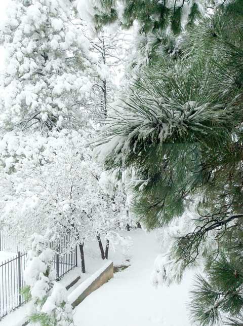 4-18-16-snow-3