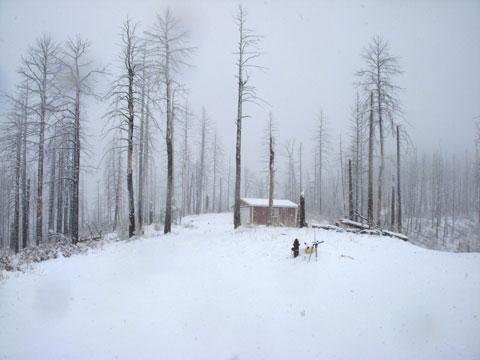 5-01-16-Snow-3
